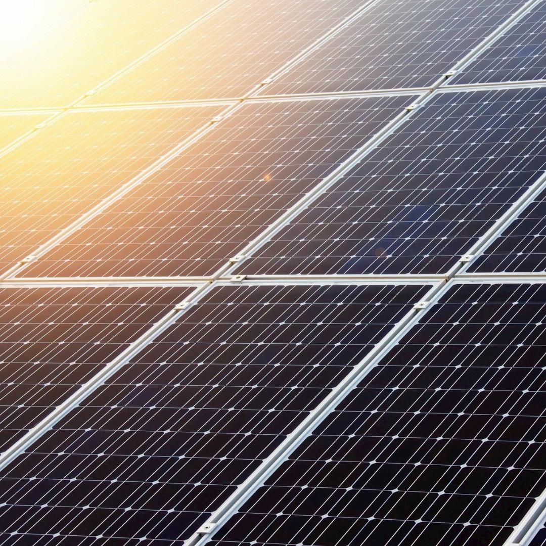 Grüne bringen Photovoltaikförderung auf den Weg