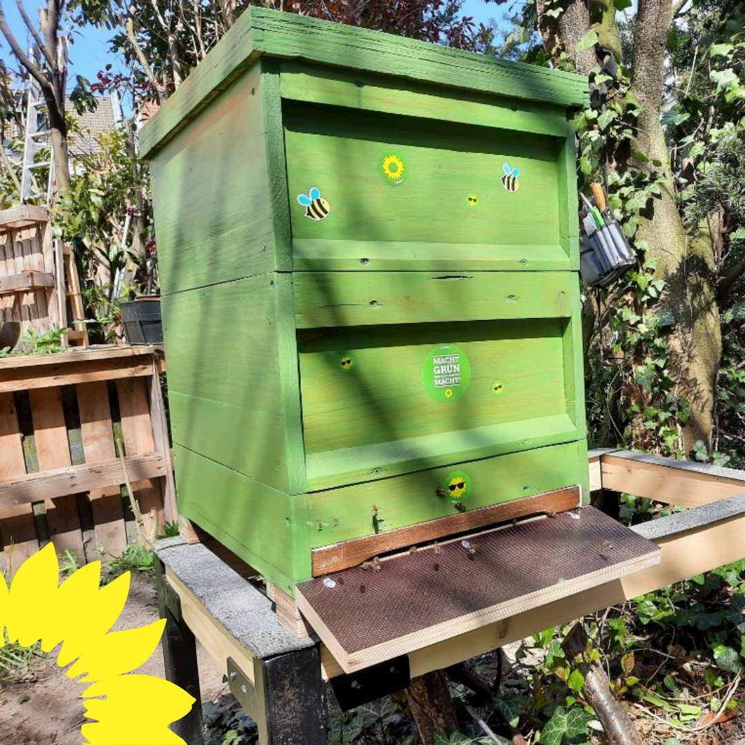 Grüne stiften Bienen für die Schwerter City