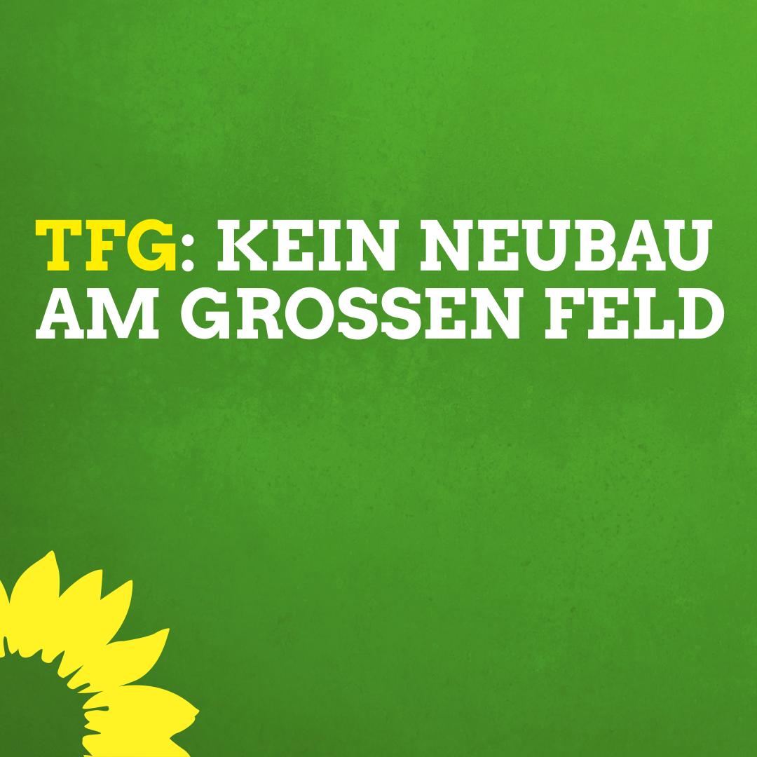 Grüne gegen Schulbau Am Großen Feld